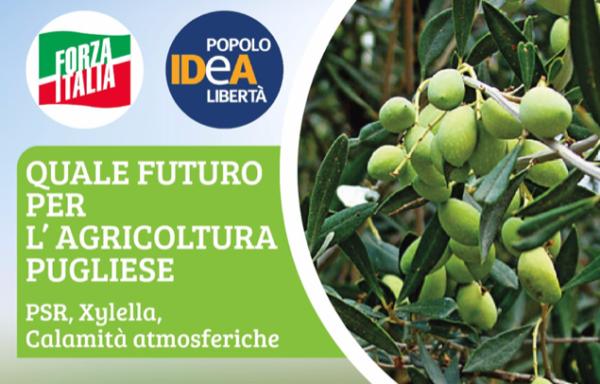 andria_agricultura